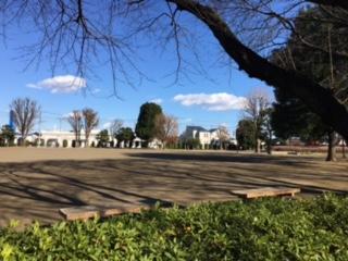 つばき公園2.png
