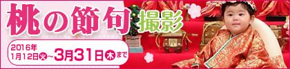 桃の節句撮影キャンペーン★「桃の節句撮影」ひな飾りと撮影できます!